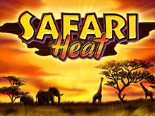 Азартная игра Safari Heat